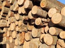 pale drewniane